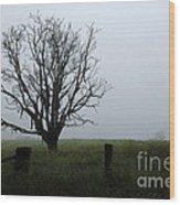 Solitude In Queensland Wood Print