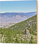 Solitude With A View - Carson City Nevada Wood Print