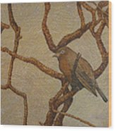 Solo Wood Print
