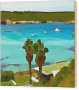 Son Saura Bay And Palms Wood Print