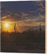 Sonoran Sunset  Wood Print