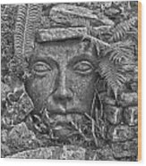 Soul And Stones  Wood Print