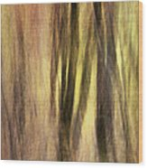 Sourwoods In Autumn Abstract Wood Print