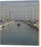 South Beach Harbor Wood Print