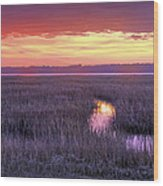 South Carolina Tidal Marshes Wood Print