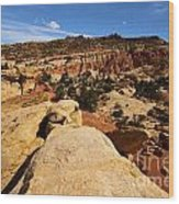 South Fruita Overlook Wood Print