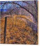 South Platte Fenceline Wood Print