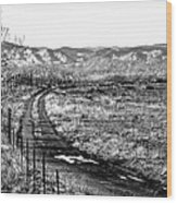 South Platte Park II Wood Print