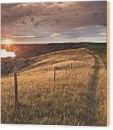 South Saskatchewan River Near Leader Wood Print