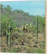 South West Desert Wood Print