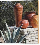 South Western Pottery And Cactus Wood Print