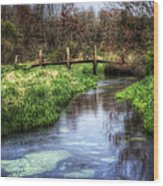 Southards Pond In Spring Wood Print by Vicki Jauron