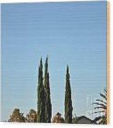 Southern California Hot Air Balloons Wood Print