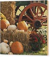Southern Harvestime Display Wood Print