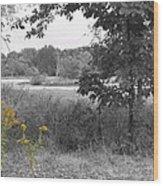 Southern Illinois Decolorized Wood Print