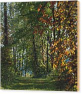 Southern Indiana Fall Colors Wood Print