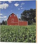 Soybean Field And Red Barn Near Anola Wood Print