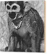 Space Monkey: Baker, 1979 Wood Print