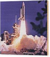 Space Shuttle Wood Print