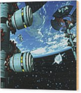 Space Stations Wood Print