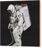 Spacesuit Used By Gemini Viii Wood Print