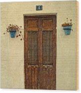 Spanish Doorstep Wood Print