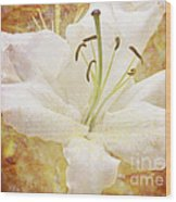 Sparkling Lily Wood Print