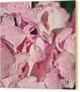Sparkling Spring Wood Print