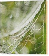 Sparkling Web Wood Print