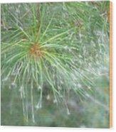 Sparkly Pine Wood Print
