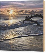 Sparkly Water At Driftwood Beach Wood Print