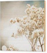 Sparkly Weeds Wood Print