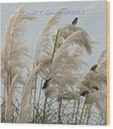 Sparrows In Breeze Wood Print