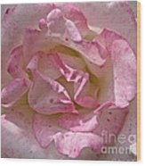 Spattered Pink Promises Wood Print