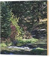 Spearfish Canyon Wood Print