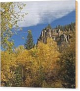 Spearfish Canyon Fortress In Rock Wood Print
