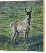 Speed Goat Wood Print