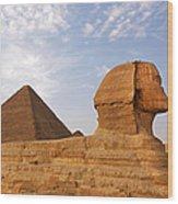 Sphinx Of Giza Wood Print by Jane Rix