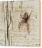 Spider Letter Wood Print by Yvon van der Wijk