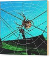 Spider On The Olympic Roof Wood Print