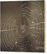 Spider Web 1.0 Wood Print