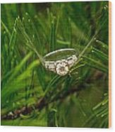 Spider Webs And Diamond Rings 10 Wood Print