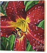 Spiderman The Day Lily Wood Print