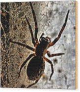 Spiders Home Wood Print