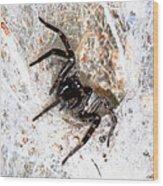 Spiders Trap Wood Print