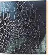 Spiderweb Blues Wood Print by Artist and Photographer Laura Wrede
