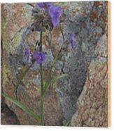 Spiderwort Wood Print