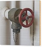 Spigot Wood Print by Blink Images