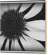 Spin Wood Print
