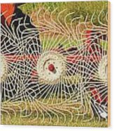 Spindizzy1233 Wood Print